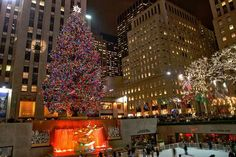 Merry Christmas from New York City – Slideshow!