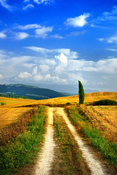 Tuscany countryside by Yoris Velcich (Italy)