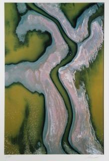 Photograph, William Garnett, Napa Marsh #1