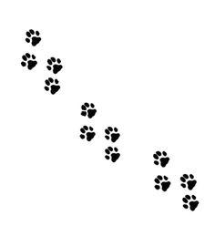 pisadas de puma - Cerca amb Google