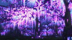 Luminos Avatar Trees by Massi-San