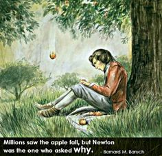 Millions saw the apple fall, but Newton was the one who asked why.  ~ Bernard M Baruch | Isaac Newton, Newton, Life Quote, Gravity