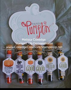 September 2016 Paper Pumpkin kit #ColledgeCreations #PaperPumpkin #Stampinup Pumpkin Cards, Paper Pumpkin, Halloween Boo, Halloween Cards, Candy Gifts, Stamping Up Cards, Fall Cards, Card Kit, Craft Fairs