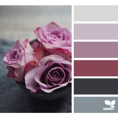 design seeds | search | for all who ♥ color ❤ liked on Polyvore featuring backgrounds, design seeds, color inspiration, color schemes and colors