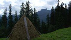 5 bonnes raisons de visiter la Roumanie