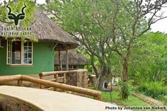 KNP - Olifants - General Africa Destinations, Travel Destinations, Kruger National Park, National Parks, Going On Holiday, My Land, South Africa, My House, Safari