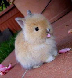 sooooooooooooooooooooooooooooooooooooooooooooooooooooooooooooooooooooooooooooooooooooooooooooooooooooooooooooooooooooo cute