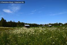 Lador - Latoja, Vestersundsby, Jakobstad / Pietarsaari