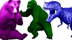Dinosaurs Finger Family Rhymes | Wild Animals Colors Gorilla Tiger Lion Finger Family Nursery Rhymes https://youtu.be/ERPXiqQ3sIU