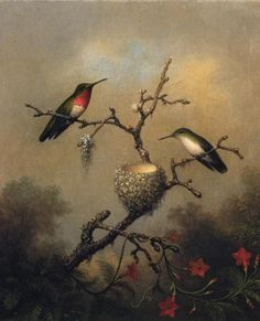 Ruby Throated Hummingbird by Martin Johnson Heade