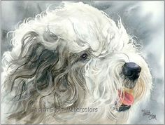 OLD ENGLISH SHEEPDOG Dog 15x11 Giclee Watercolor Print
