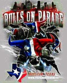 Bulls On Parade Poster Houston Texans Funny, Texans Memes, But Football, Houston Texans Football, Football Crafts, Houston Oilers, Football Memes, Houston Tx, Dallas Cowboys