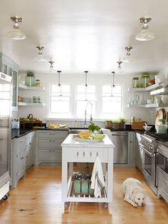 Love the gray color of these cabinets ... can I get the dog too?