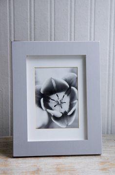 Black and White Photograph Tulip Flower Framed Print Film