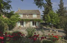 LA TREILLE MUSCATE - Languedoc Roussillon - Hérault