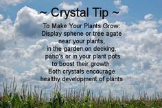 To make yor plants grow display spherite or tree agate near your plants, in the garden, on decking, patio's or in your plant pots to boost their growth. Both crystals encourage healthy development of plants.