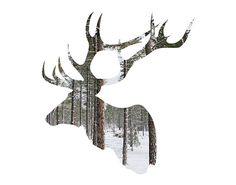 Elk Photography / antlers silhouette print art / by BokehEverAfter