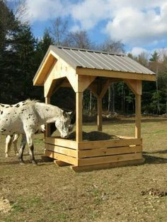 Get some latest modern easy DIY horse shelter ideas, portable shed, temporary shelters, and stalls. You can make custom horse barns yourself from wooden pallets. Get help from these images. Horse Shed, Horse Arena, Horse Stables, Horse Farms, Hay Feeder For Horses, Horse Feeder, Cow Feeder, Hay Hut, Round Bale Hay Feeder