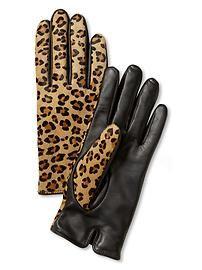 Leopard glove