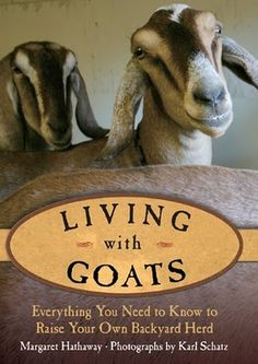 I don't want a herd, but I've always wanted one or two goats. Mini ones, maybe? They are good conversationalists. Keeping Goats, Raising Goats, Nubian Goat, Goat Care, Nigerian Dwarf Goats, Cute Goats, Mini Farm, Farms Living, Homestead Living