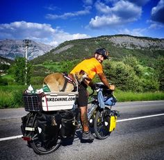 Cycling with dog - For more great pics, follow www.bikeengines.com