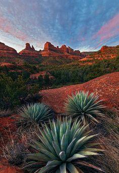 USA Arizona