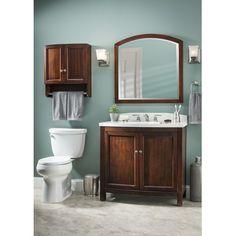 Allen Roth Moravia Sable Storage Cabinet Common 22 In Actual Bathroom Linen Cabinetbathroom Wall
