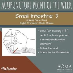 #TipTuesday: #Acupuncture Point of the Week, Small Intestine 3! #integrativelife