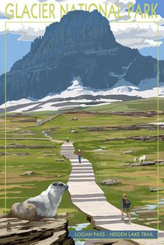 Logan Pass - Glacier National Park, Montana - Lantern Press Poster