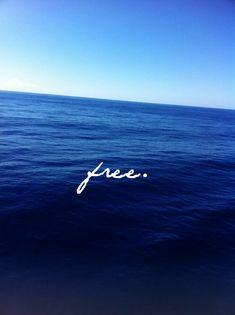 f r e e || we are as free as could be when we are in the ocean.
