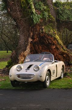 383 best bugeye obsessed images austin healey sprite mg midget autos rh pinterest com