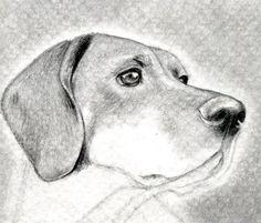 como aprender a dibujar animales domesticos a lapiz 8