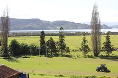 Rawene Rugby field