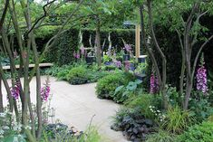 RHS Chelsea Flower Show 2014 by Karen Roe, via Flickr lovely ideas for under the tree