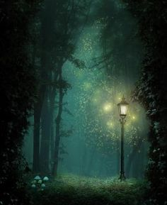 Reminds me of Narnia with the lamp post there like that. by sheila.reyes.169