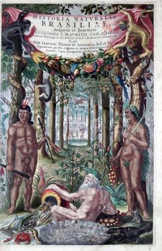 Frontispiece Historia Naturalis Brasiliae 1648. by the Dutchmen Willem Piso,  Joannes de Laet, Georg Marggraf - who were also associated with Dutch artists French Post and Albert Eckhout in Brasil.
