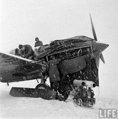 Curtiss P-40 Warhawk by D. Sheley, via Flickr