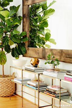 Living space with gold and glass bookshelves, a large reclaimed wood mirror and an indoor plant
