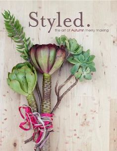 Styled magazine - a digital publication featuring artistic event design, creative DIY projects and unique party products.