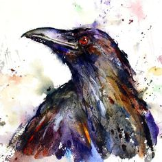 Watercolor Raven
