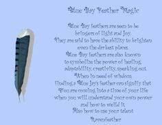 New Version of BlueJay Feather Magic *Please check your local and federal guidelines for feather collection and possession! Blue Jay Meaning, Black Feather Meaning, Bird Meaning, Meaning Of Feathers, Animal Spirit Guides, Your Spirit Animal, Willow And Sage, Jay Feather, Blue Jay Bird