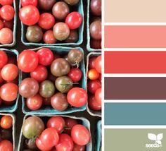 ♥ tomato hues