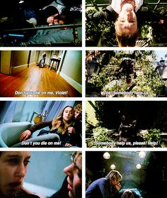 Tate and Violet / Kyle and Zoe, American Horror Story