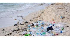 Debate over banning plastic water bottles explored with sourced pro and con research. of bottled water sold in the United States is in single-serve plastic bottles. of plastic water bottles are not recycled. Is it time to ban bottled water? Ocean Pollution, Plastic Pollution, Drink Bottles, Water Bottles, Bottled Water, Plastic Bottles, Selfies, Bff, Drink Containers