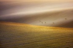 Photography by Marcin Sobas