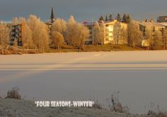 """"""" Four seasons-winter """" Rovaniemi Finland by Aili A. Winter White, Four Seasons, Finland, Winter Wonderland, Snow, Outdoor, Outdoors, Seasons Of The Year, Outdoor Games"""