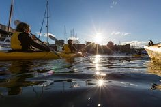 Paddling in the afternoon towards the fish n chip punts along the Hobart waterfront. If you want to explore Hobart from a completely different perspective make sure to check out Roaring 40s Kayaking it's an awesome way to spend an afternoon and the fish n chips are some of the best in Hobart too.