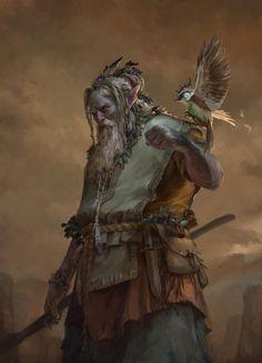 Druid by Tomas Duchek.