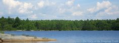 View from Armstrong Point on ‪#‎Yawgoog‬ Pond; on the Yellow Trail.  A 2014 image by David R. Brierley.