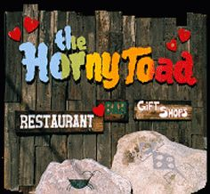 The Horny Toad - Cave Creek, Arizona! Such a good restaurant!